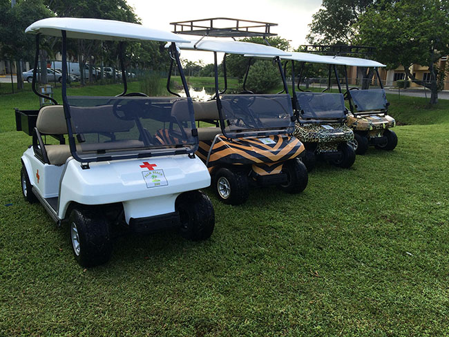 Multiple Golf Carts